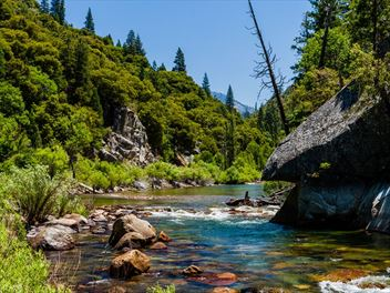 Exploring Sequoia and Kings Canyon National Parks