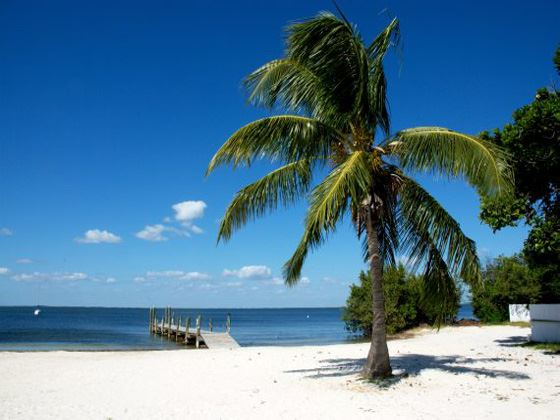 Key Largo beach