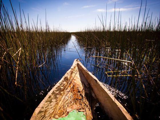 Mokoro on the Okavango Delta