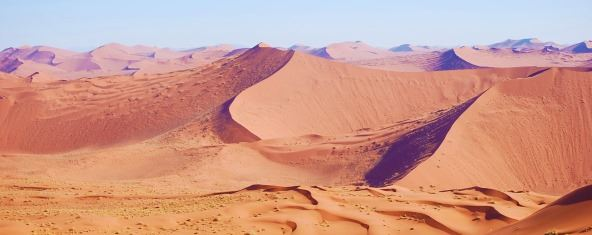 Alex's photo of Namibia sand dunes