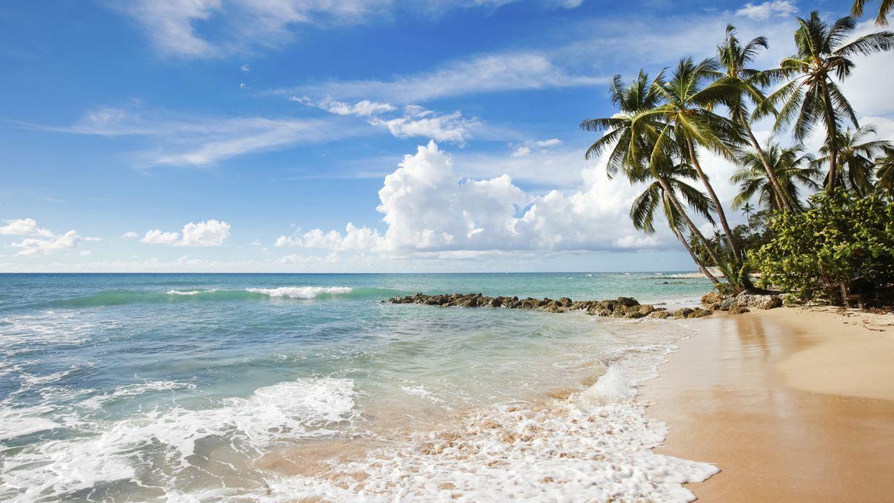 Platinum Coast, Barbados