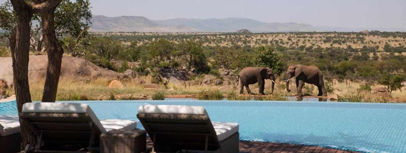 Four Seasons Safari Lodge swimming pool