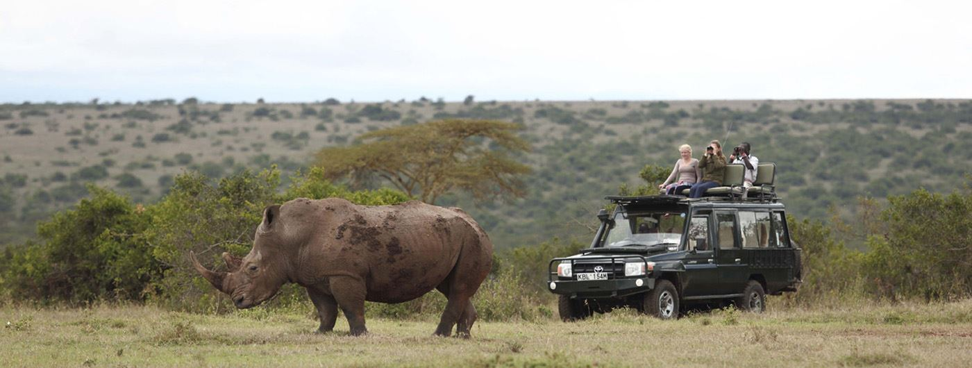 Marvel at this world-renowned rhino breeding reserve at Solio Lodge