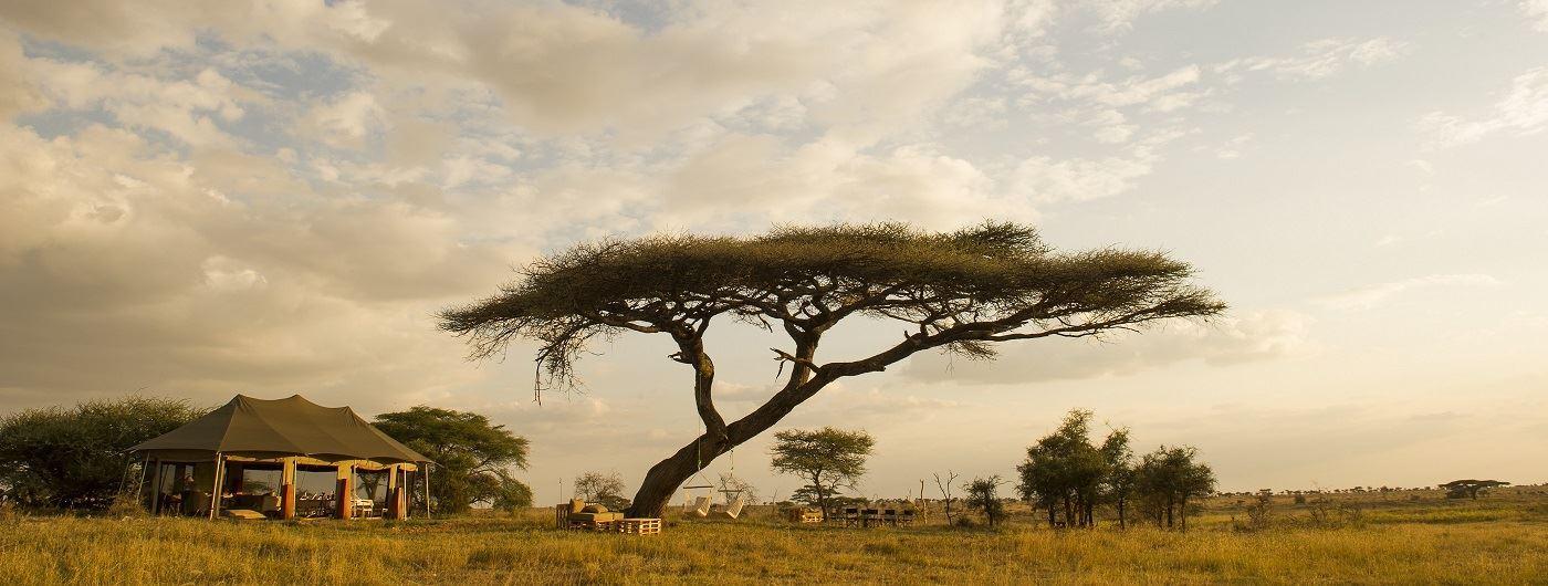 The Namiri Plains