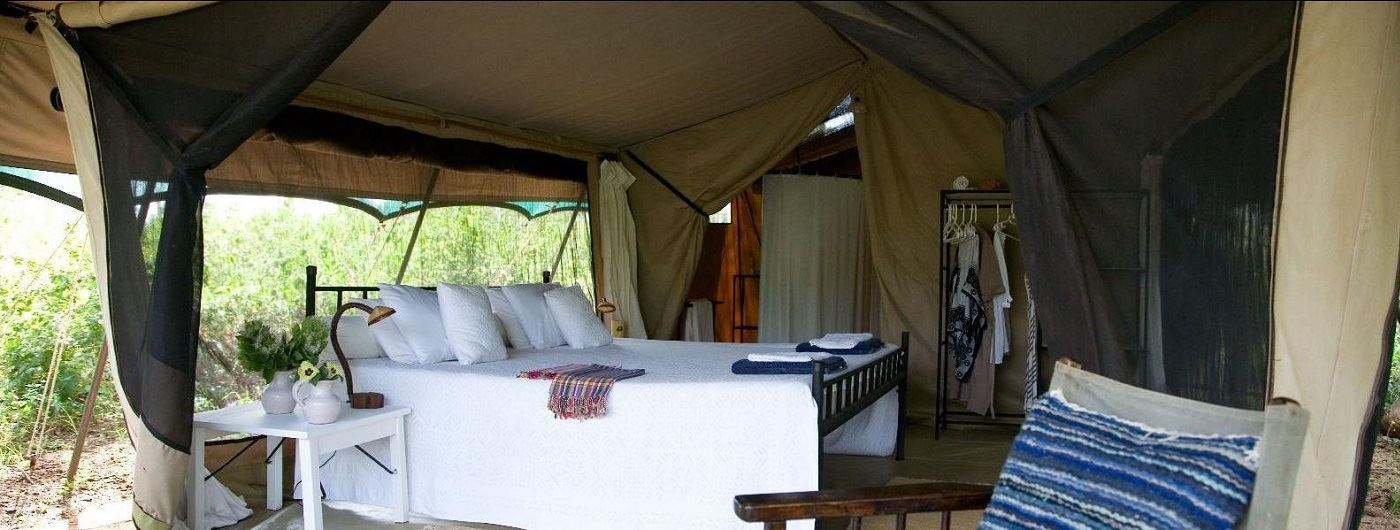 Offbeat Meru Double Tent interior