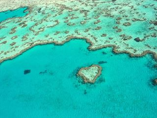 Heart Reef, Great Barrier Reef