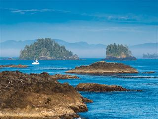 Wild Pacific Trail at Ucluelet