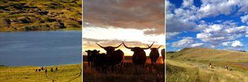 La Reata Ranch, Saskatchewan