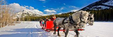 Enjoy a sleigh ride in Banff National Park