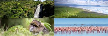 Aberdare & Lake Nakuru landscapes and wildlife
