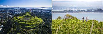 Auckland & Waiheke Island