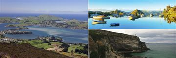 Beautiful Coastal Scenery in Dunedin, South Island