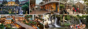 Beautiful Scenery & Activities at the Gaylord Opryland Resort
