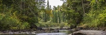 A river in Algonquin Provincial Park