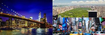 Brooklyn Bridge, Central Park and Times Square, New York City
