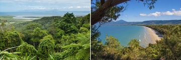 Daintree Forest and Port Douglas