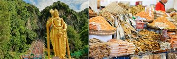Luxury Cameron Highlands; Batu Caves; Local Food Market.