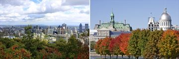 Montreal Cityscapes