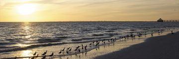Sunset across Fort Myers beach