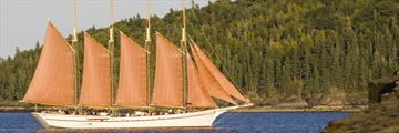 Four masted schooner, sailing by Acadia National Park