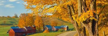 Autumnal road landscapes in New England