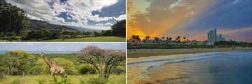 Hluhluwe giraffe, Swaziland & Durban