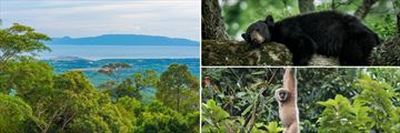 Kampot Landscapes & Wildlife