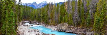 Kicking horse river, Yoho National Park, Kootenay Rockies