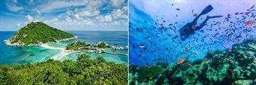 Koh Tao vistas and amazing diving