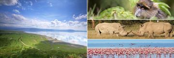 Lake Nakuru landscapes & wildlife