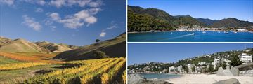 Marlborough Region, Picton & Wellington
