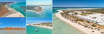Monkey Mia Dolphin Resort, (clockwise from top left): Aerial Views, Cruise and Paddleboarding