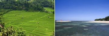 Munduk rice terraces & Sanur beachfront