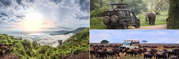 Ngorongoro Crater & Wildlife Sightings