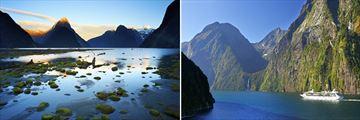 Overnight Cruise on Milford Sound, Fiordland