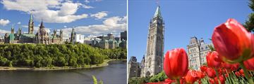 Parliament Hill & Peace Tower in Ottawa