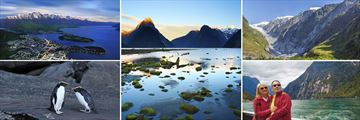 Queenstown, Fiordland Penguins, Milford Sound & Franz Josef Glacier