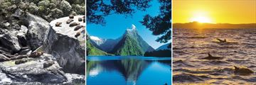 Fiordland National Park Wildlife & Scenery, South Island