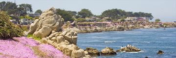 Pacific Grove, Monterey