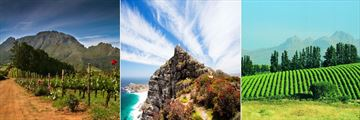 South Africa wine country, Cape Point & Stellenbosch Vineyards