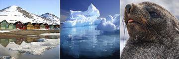 Svalbard Houses, Arctic Icebergs & Seal