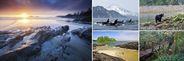 Tofino landscapes & wildlife