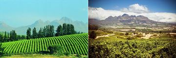 Views across the winelands