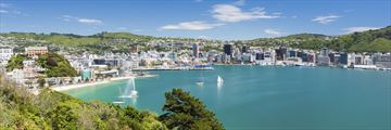Wellington Bay Harbour