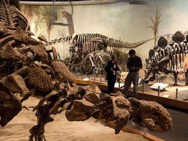 Dinosaur adventures in Alberta