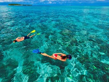 Snorkelling activities at Kurumba