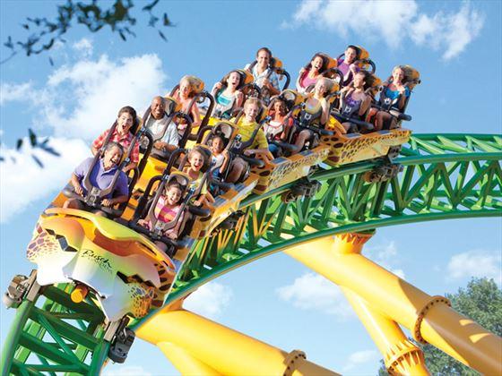 Cheetah Hunt Roller Coaster, Busch Gardens, Tampa