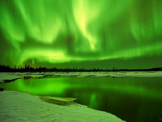Aurora Borealis Northern Lights reflections in a lake in winter at Fairbanks Alaska