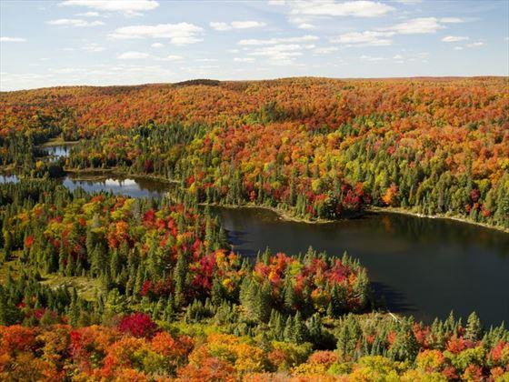 Autumn in Algonquin Provincial Park