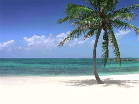 Bahamas white-sand beach